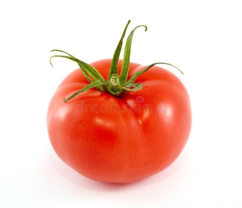 tomate fraîche photographie stock libre de droits