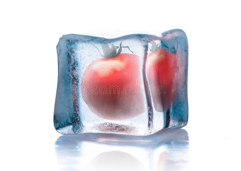 Tomate fresco en el cubo de hielo aislado en blanco fotografía de archivo