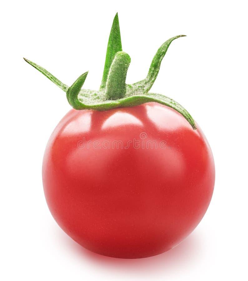 Tomate fresco vermelho isolado com sombra no fundo branco fotos de stock royalty free