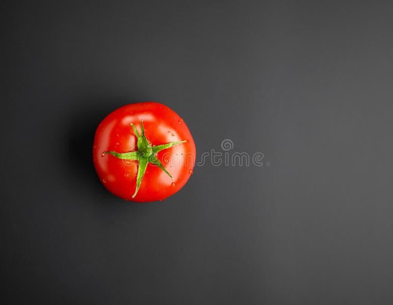 Tomate humide rouge fraîche photo libre de droits