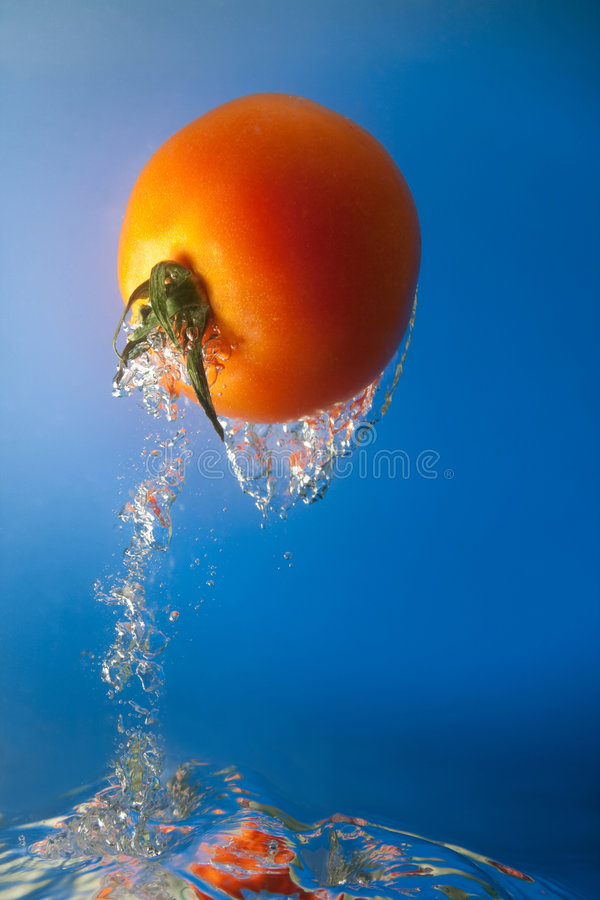 Tomate im Wasser lizenzfreie stockfotografie