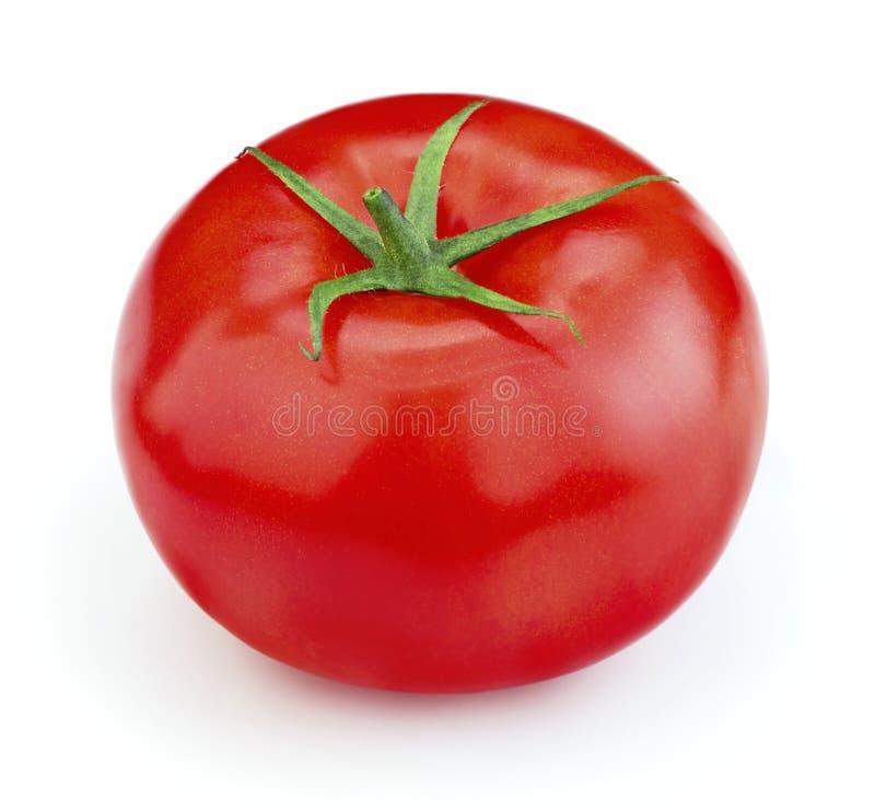 Tomate maduro isolado fotografia de stock royalty free