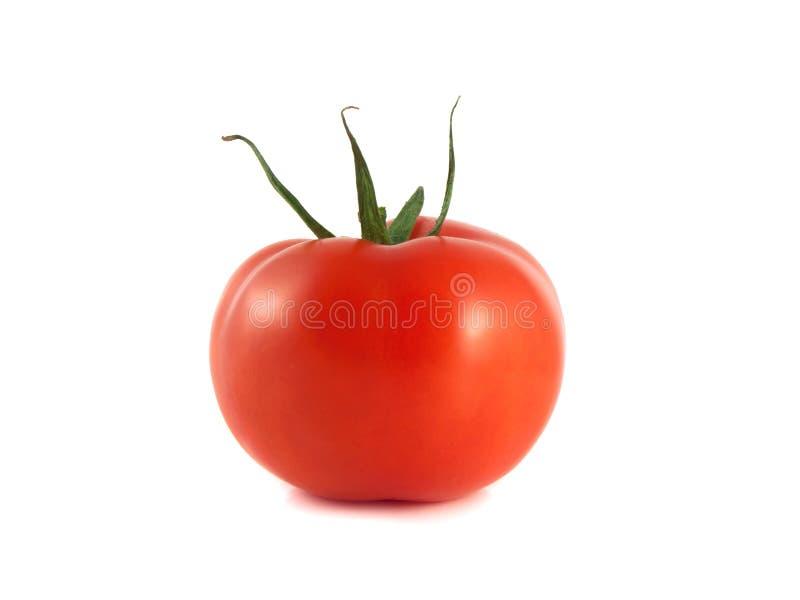 Tomate maduro vermelho isolado em um fundo branco foto de stock royalty free