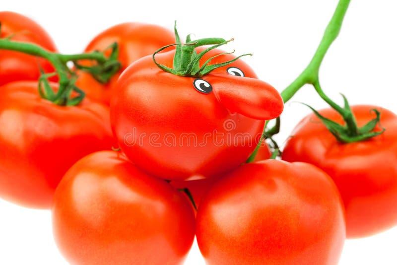 Tomate mit Augen und ein Bündel der Tomate lizenzfreies stockbild