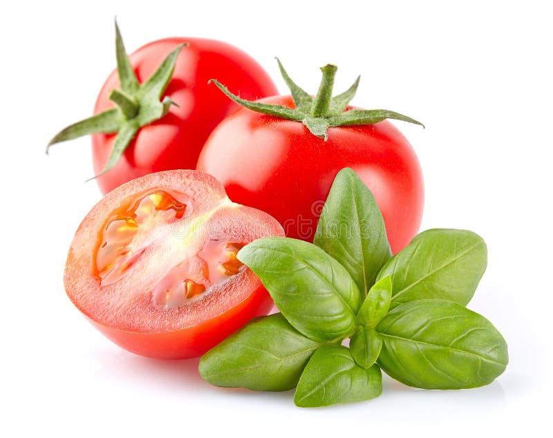 Tomate mit Basilikum stockbild