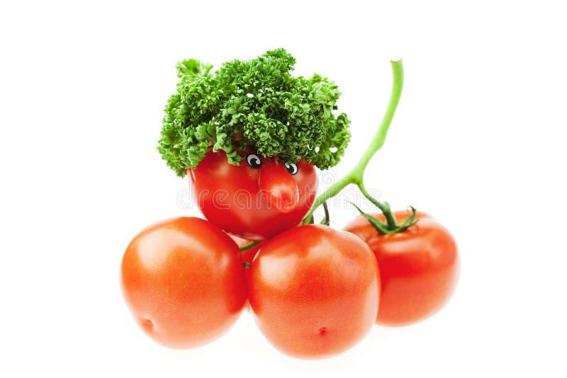 Tomate mit einer Wekzeugspritze stockbilder