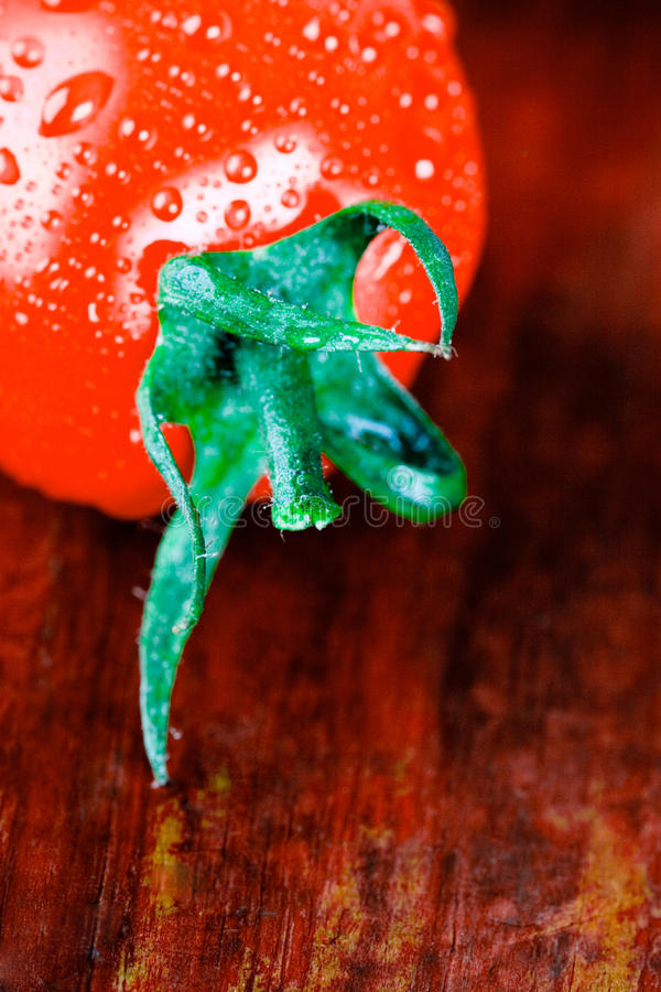 Download Tomate molhado foto de stock. Imagem de folha, jantar - 16871242