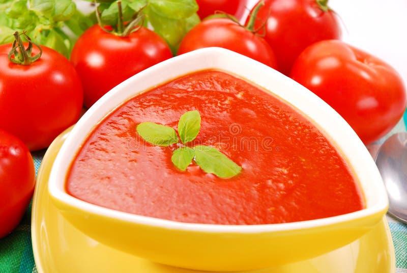 _tomate poner crema sopa con albahaca fotografía de archivo libre de regalías