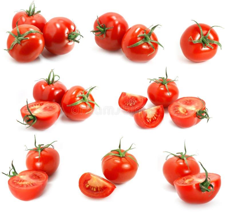 Tomate-Probeflasche lizenzfreie stockfotos