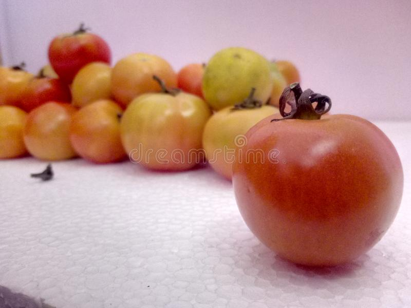 Tomate roter-Delicious lizenzfreie stockfotos