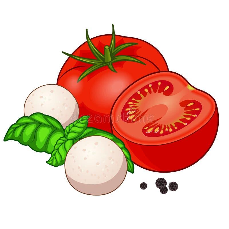 Tomate rouge fraîche avec du mozzarella, le basilic et le poivre d'isolement sur le fond blanc photographie stock libre de droits