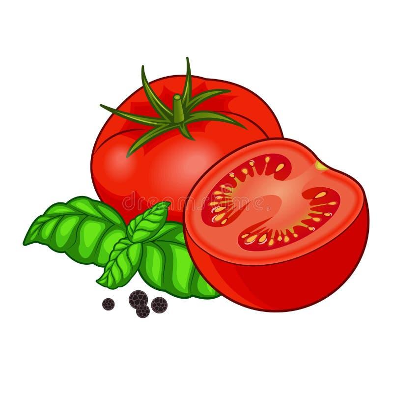 Tomate rouge fraîche avec le basilic et poivre d'isolement sur le fond blanc image libre de droits