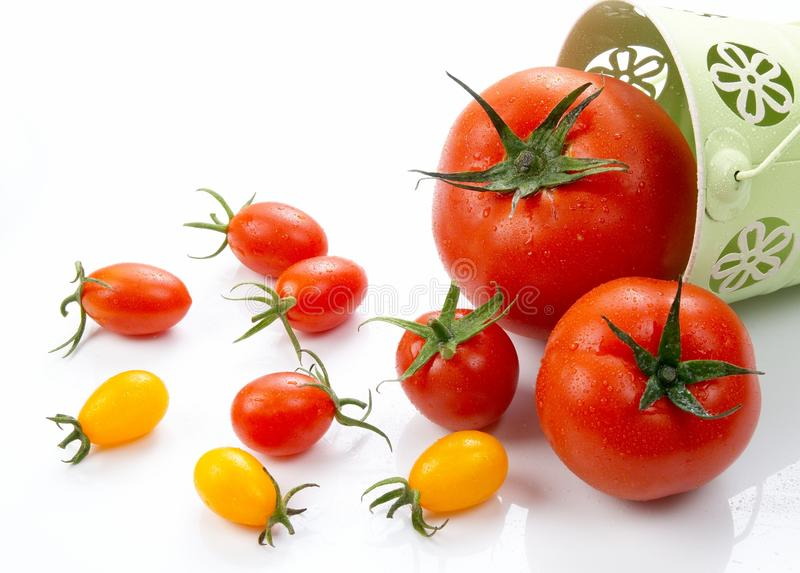 Tomate rouge fraîche de tige verte sur le fond blanc image stock
