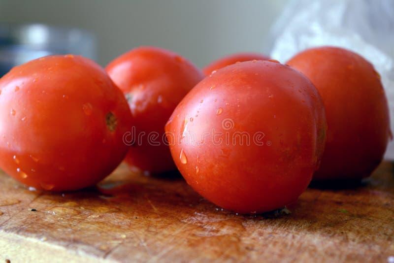 Tomate rouge fraîche du jardin avec des gouttelettes de l'humidité photo libre de droits