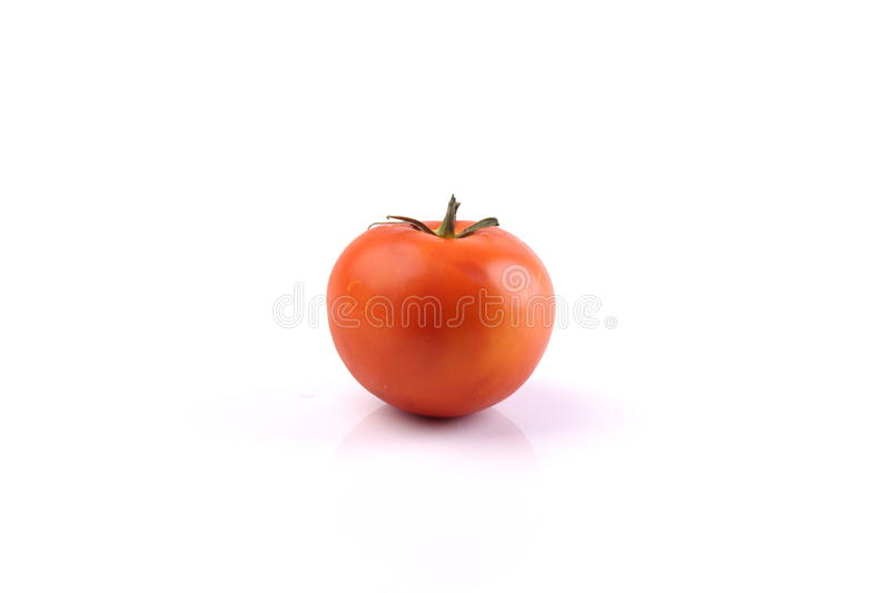 Tomate rouge sur le fond blanc photo libre de droits