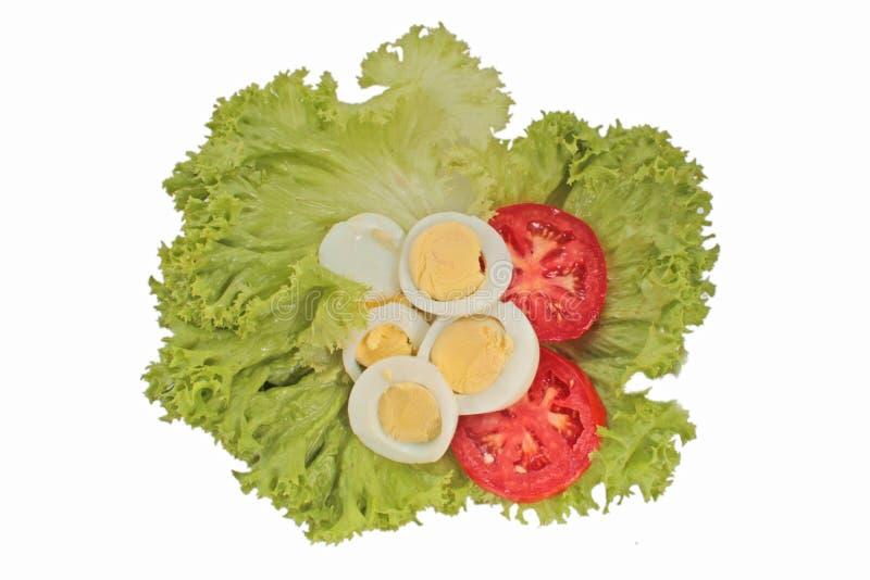 Tomate saboroso e salada dos ovos foto de stock royalty free