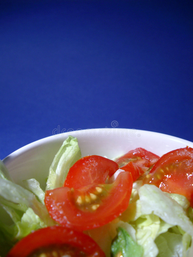 Tomate-Salat stockbild