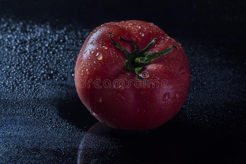 Tomate sur le fond noir photos libres de droits