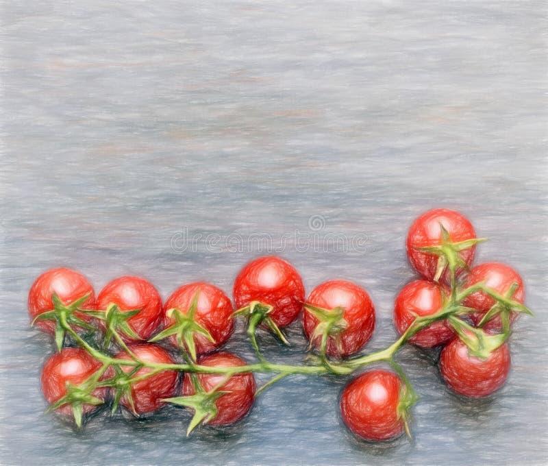 Tomate-table illustration libre de droits