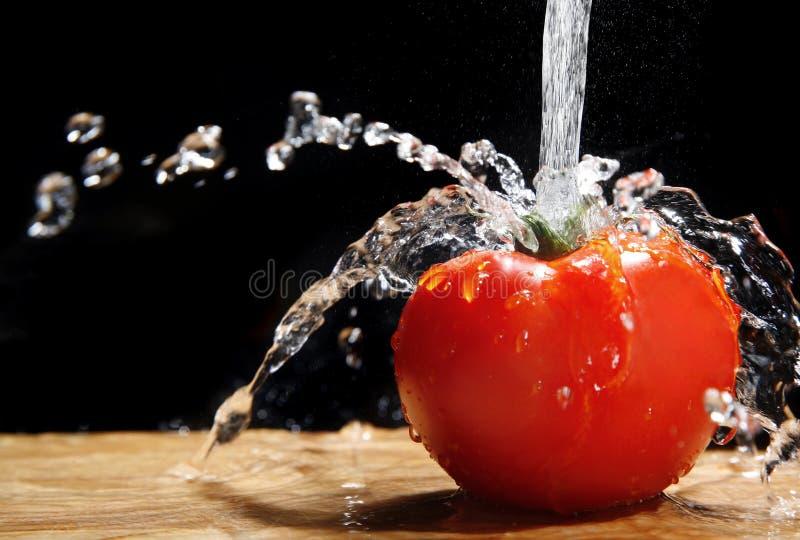 Tomate und Wasser lizenzfreie stockbilder