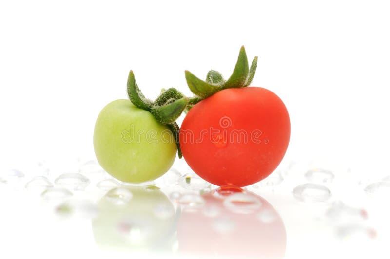 Tomate verde e vermelho em gotas da água imagem de stock royalty free