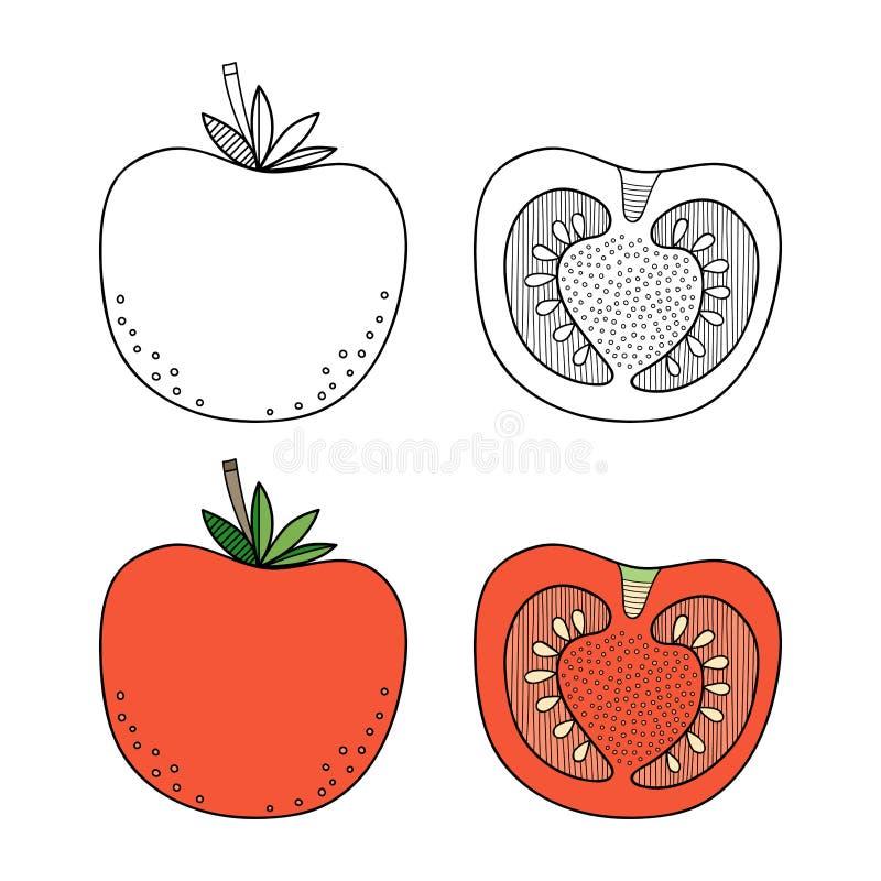 Tomate, Verdura Ejemplo Blanco Y Negro Para El Libro De Colorear ...