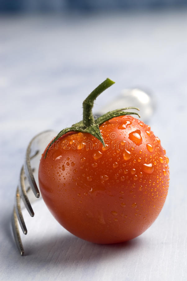 Tomate vermelho fresco. imagens de stock royalty free