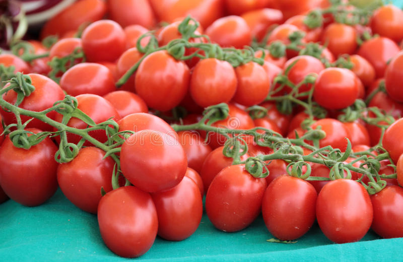 Tomate vermelho fresco do pelati da cereja fotografia de stock