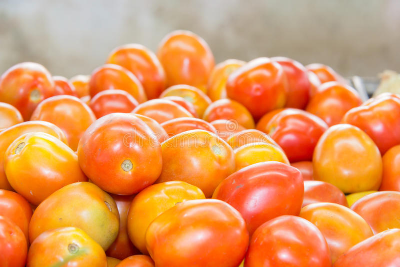 Tomate vermelho na tabela no mercado, fotos de stock royalty free