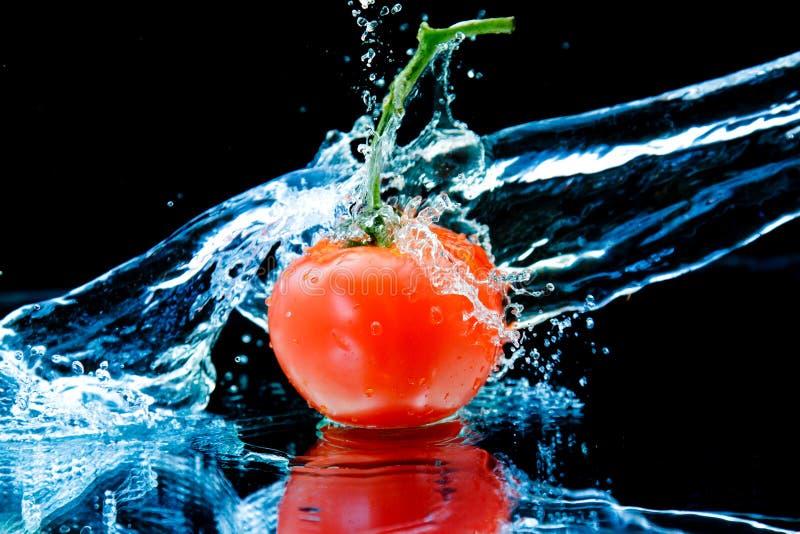 Tomate y agua del chapoteo imagenes de archivo