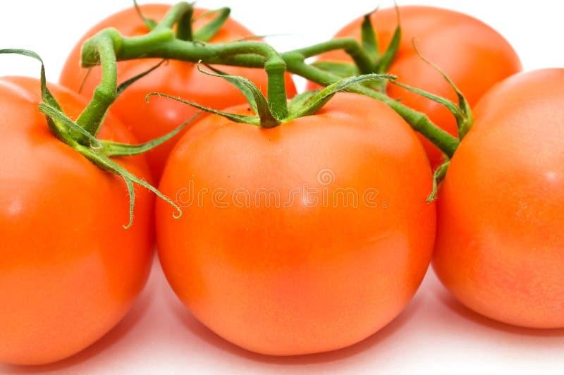 Download Tomaten. stock foto. Afbeelding bestaande uit kleur, stuk - 10783044
