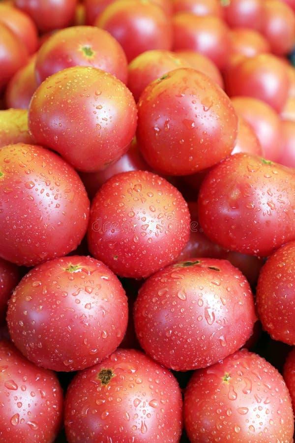 Download Tomaten stockbild. Bild von tropfen, tomate, gemüse, glänzend - 27728835