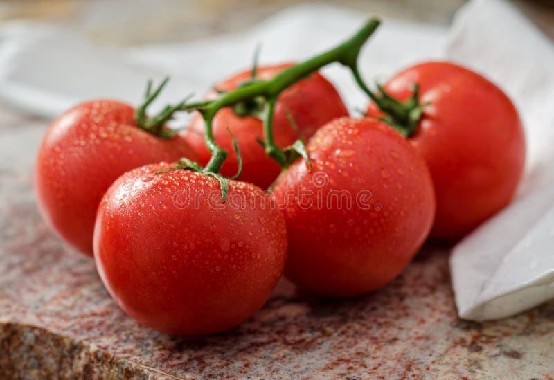 Download Tomaten stock foto. Afbeelding bestaande uit tomaten - 29512098