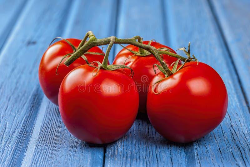 Tomaten angezeigt mit der Rebe lizenzfreies stockbild