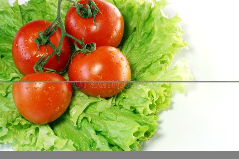 Tomaten auf Blättern des Salats lizenzfreie stockfotografie