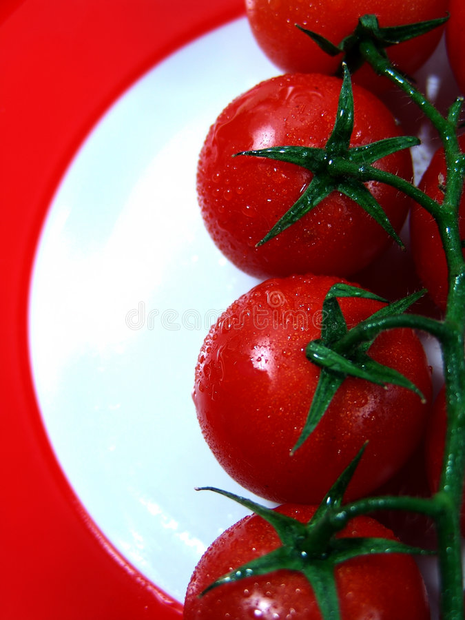 Tomaten auf roter Platte lizenzfreies stockfoto