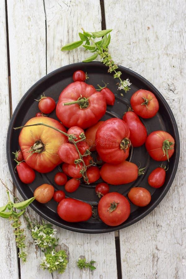 Tomaten auf schwarzer runder Servierplatte stockfotografie
