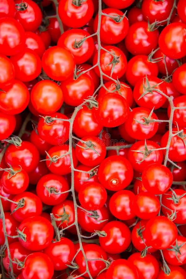 Tomaten bij de box van de marktvertoning royalty-vrije stock afbeeldingen