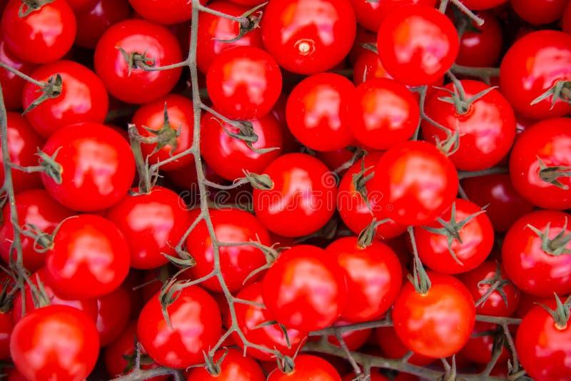 Tomaten bij de box van de marktvertoning stock afbeelding