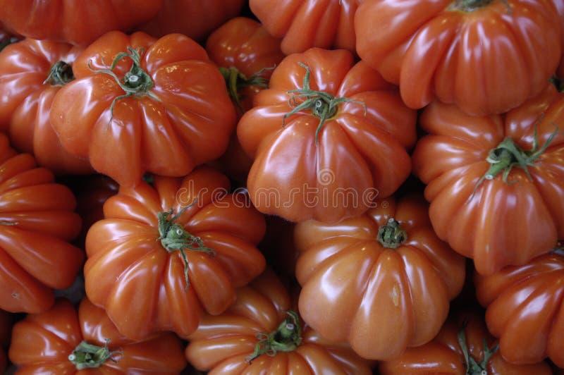 Tomaten bij de markt royalty-vrije stock afbeeldingen