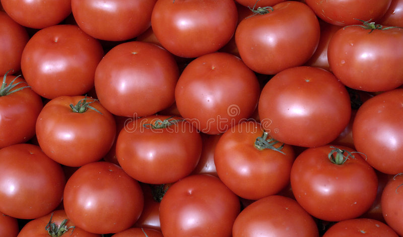 Tomaten bij de markt royalty-vrije stock foto