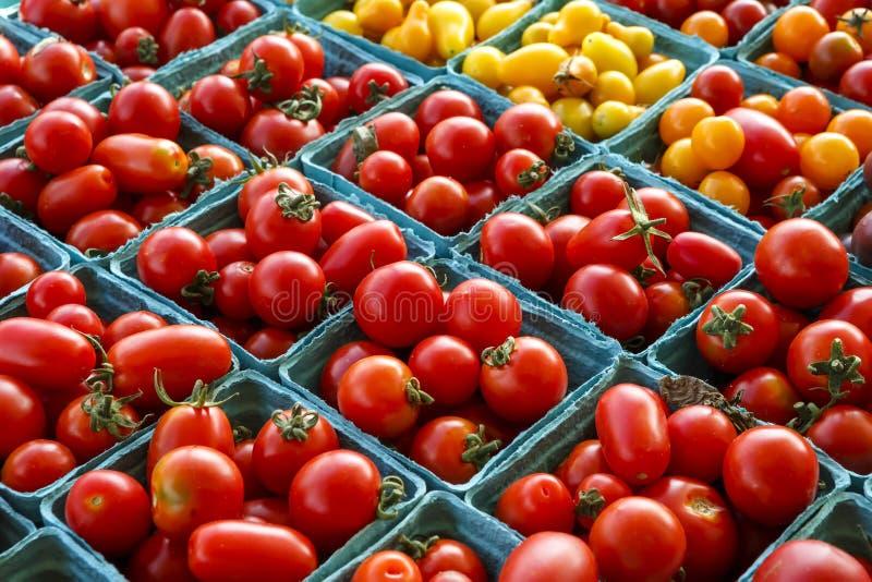Tomaten bij Lokale Markt royalty-vrije stock fotografie