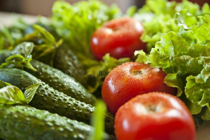 Tomaten, cucambers en greens close-up stock fotografie