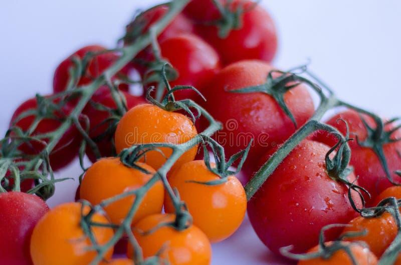 Tomaten in der Gruppe auf weißem Hintergrund lizenzfreie stockbilder