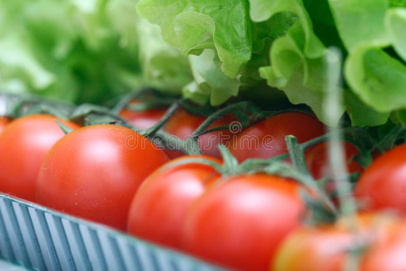 Tomaten in doos stock foto