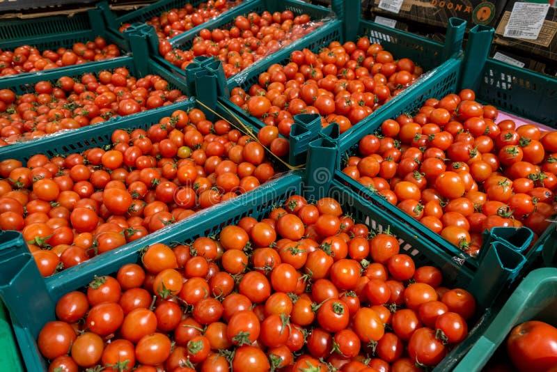 Tomaten in dozen royalty-vrije stock foto's