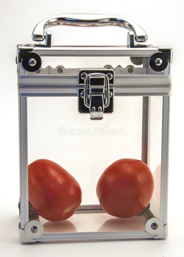 Tomaten in einem Kasten lizenzfreies stockbild