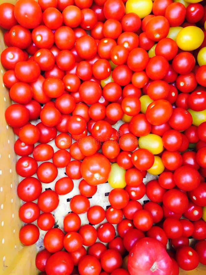 Tomaten in einer Kiste lizenzfreie stockbilder