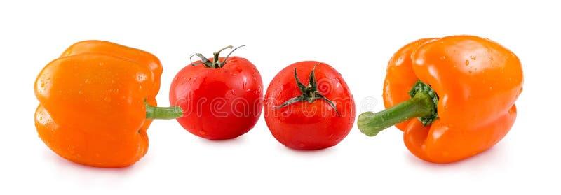 Tomaten en Gele die Groene paprika met dalingen op witte achtergrond worden geïsoleerd De kopbalbanner van de panoramawebsite stock foto