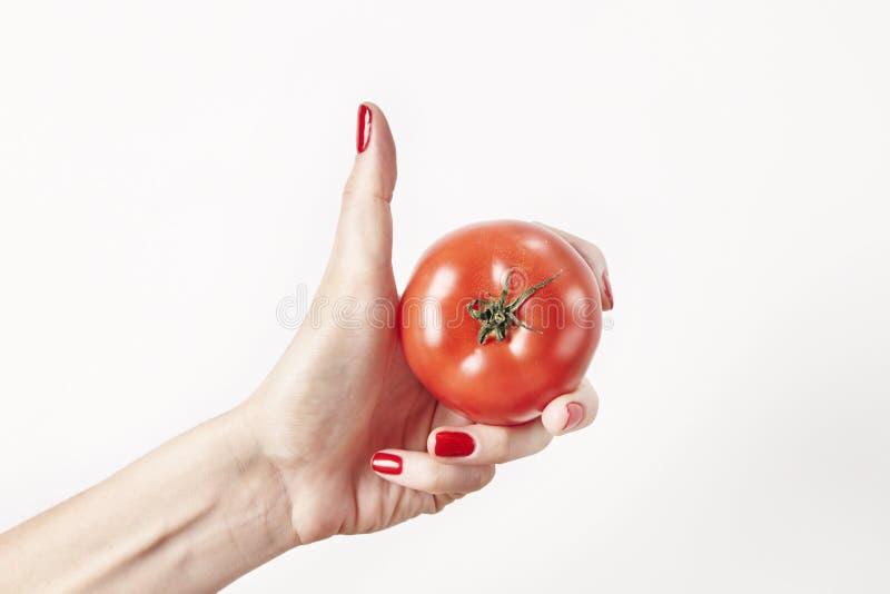 Tomaten för den nya grönsaken i kvinnahanden, fingrar med rött spikar manikyr som isoleras på vit bakgrund, det sunda livsstilbeg royaltyfria foton